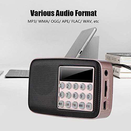 Value-5-Star - M-15 Mini Speaker Radio PW Cut Memory MP3 Player Radio 87.5-108MHz USB FM Radio speaker ()