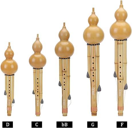 EDWRD Conjunto De 5 Piezas Chino Hulusi Instrumento Musical étnico De Cucurbitáceas De Bambú (D,C,BB,G,F) para Amantes De La Música para Principiantes con Caja,A: Amazon.es: Hogar