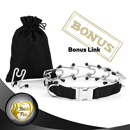Beloved Pets Prong Training collar CLASP (Large 21.5 Inch) - Stainless Steel with silver plating - Available in 4 sizes: S, M, L, XL - Durable Collar for All Dogs