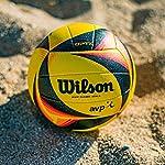 Wilson-Pallone-Beach-Volley-Ufficiale-AVP-WTH00020XB