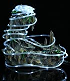 Findyouled 32.8ft 100 LED Solar Rope Lights, Waterproof Outdoor Rope Lights, 6000K Daylight White, Portable, LED String Light with Light Sensor, Ideal for Wedding, Party, Decorations, Gardens, Lawn