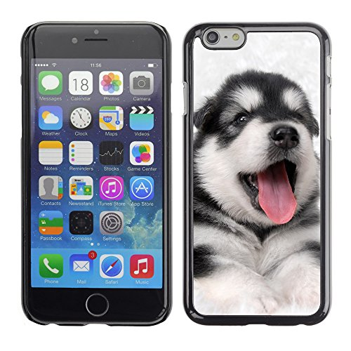 """Premio Sottile Slim Cassa Custodia Case Cover Shell // V00002146 Chien // Apple iPhone 6 6S 6G PLUS 5.5"""""""