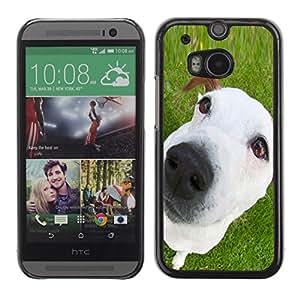 TopCaseStore / la caja del caucho duro de la cubierta de protección de la piel - Jack Russell Mutt Mongrel White Puppy - HTC One M8