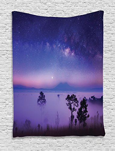 Ambesonne Space Decorations Collection, Milk Way Starry Night in a National Park Thailand Mystical Forest Scenery Picture, Bedroom Living Room Dorm Wall Hanging Tapestry, Purple Blue