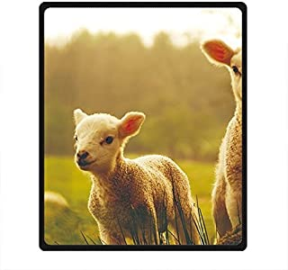 'Pecore DOUBEE Custom morbida e calda Coperta di pile coperta da picnic Festival al aire libre 50x 60' 50' x 60' E