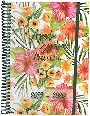 Agenda Escolar PRAXTON Flores Salvajes 2019/20 (Din-A6 ...