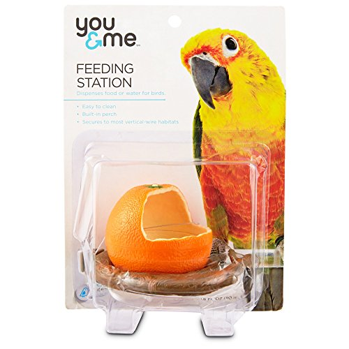 Fruit Bowl Feeder for Birds - Orange-Shaped Plastic Food Dish for Finches, Canaries, Budgies, Lovebirds, Cockatiels, and Quakers