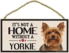 Wondering How Many Puppies Can A Yorkie Have Lets Have A Look