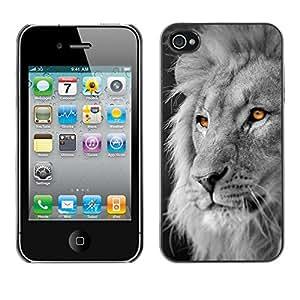 iBinBang / Funda Carcasa Cover Skin Case - White Lion King Africa Negro Naranja - Apple iPhone 4 / 4S