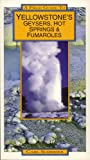 Field Guide to Yellowstone's Geysers, Hot Springs and Fumaroles, Carl Schreier, 0943972094