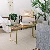 Deny Designs Jacqueline Maldonado Mist Green Birch Coffee Table