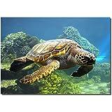 "Picture Sensations Framed canvas Art Print, Sea Turtle Underwater ocean World - 40""X28"""