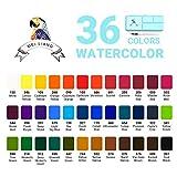 MeiLiang Watercolor Paint Set, 36 Vivid Colors in