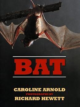 Bat Caroline Arnold ebook product image