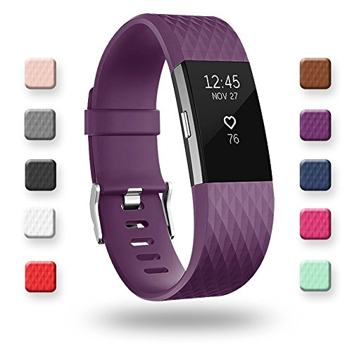 POY Replacement Bands Compatible for Fitbit Charge 2, Classic & Special Edition Sport Wristbands, Small Plum, 1PC