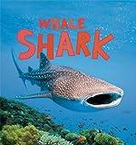 Whale Shark, Camilla De la Bédoyère, 1609923731