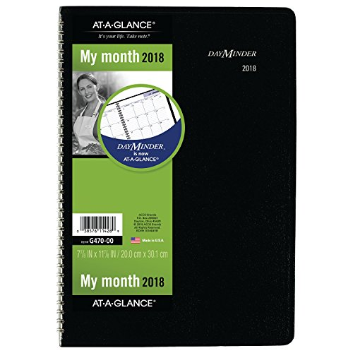 Wirebound Monthly Planner (AT-A-GLANCE DayMinder Monthly Planner, 2018, December 2017 - January 2019, 7-7/8