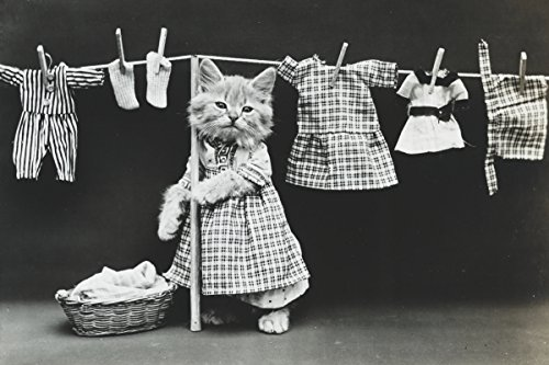 (ClassicPix Photo Print 11x17: Hanging Up The Wash, 1914)
