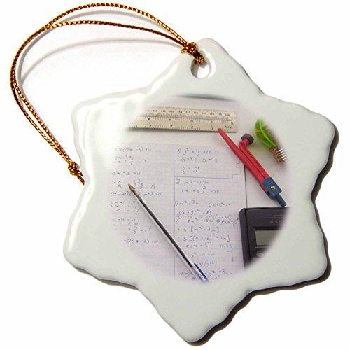 3Drose Orn 113081 1 Math Photography Mathematics Equations Calculator For Nerd Teacher Tutor Student Snowflake Ornament  Porcelain  3 Inch