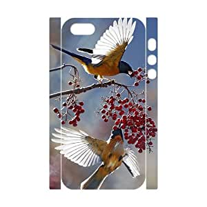 Hummingbird Phone Case For iPhone 5,5S [Pattern-1]