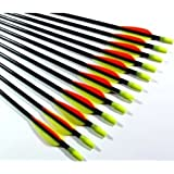 "12 Shiny Black® 30"" Fiberglass Target Practice Arrows"