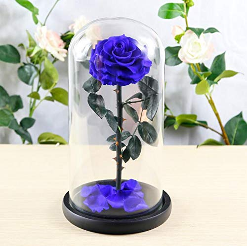 sexyrobot Beauty And The Beast Rose, Handmade Preserved Fresh Flower Real Rose with Fallen Petals in a Glass, with Exquisite Box for Valentine's Day, Mother's Day, Christmas (Blue) by sexyrobot (Image #2)