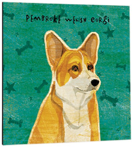 (Tree-Free Greetings 61044 Premium Square Eco Magnet, 3.5-Inch, Pembroke Welsh Corgi)