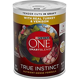 Purina ONE Natural, High Protein Gravy Wet Dog Food, SmartBlend True Instinct Real Turkey & Venison - (12) 13 oz. Cans