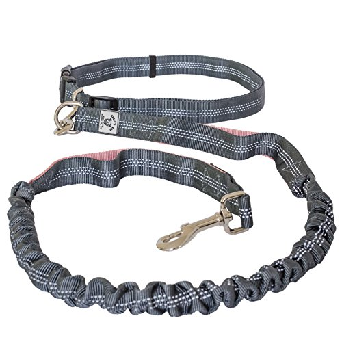Banjo's Box | Premium Quality Hands Free Lightweight Reflective Bungee Dog Leash For Running, Walking & Hiking | 4-Foot Long Fits Sizes 28-48 (Grey/Pink)