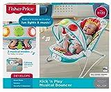 Fisher-Price Fun 'n Fold Bouncer