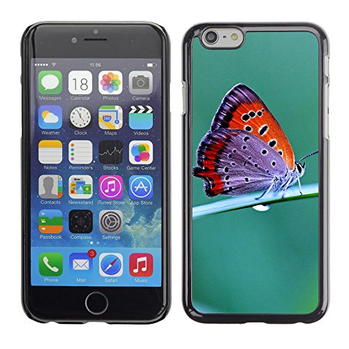 "Premio Sottile Slim Cassa Custodia Case Cover Shell // V00003058 papillon // Apple iPhone 6 6S 6G PLUS 5.5"""