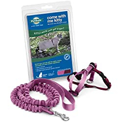 PetSafe Come With Me Kitty Harness and Bungee Leash, Harness for Cats, Large, Dusty Rose/Burgundy