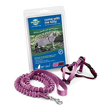 PetSafe Come With Me Kitty Harness and Bungee Leash, Medium, Dusty Rose