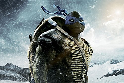 Amazon.com: makeuseof Leonardo Teenage Mutant Ninja Turtles ...