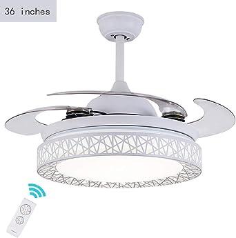 LAZ Ventiladores de techo de 36 pulgadas con luz, ventilador de ...