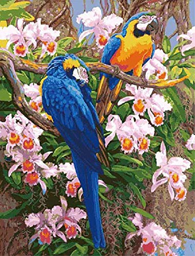 ABEUTY DIY Paint by Numbers for Adults Beginner - Parrot Bird Flowers 16x20 inches Number Painting Anti Stress Toys (No Frame)