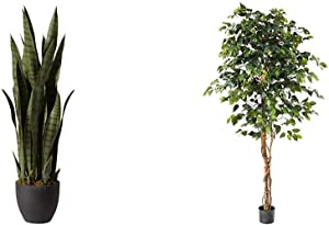 Nearly Natural, Green 4855 35in. Sansevieria with Black Planter & 6ft. Ficus Artificial Trees, 72in, Green