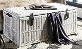 happimess Caden 46'' Wicker Storage Trunk, White