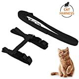 KAISHUITANGJIBA Cat Harness, Adjustable Harness Nylon Strap Collar with Leash, Cat Leash and Harness Set, For Cat and Small Pet Walking (Black)