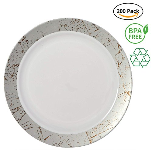 Party Joy 'I Can't Believe It's Plastic' 200-Piece Plastic Dinner Plate Set | Marble Collection | Heavy Duty Premium Plastic Plates for Wedding, Parties, Camping & More (Silver) from PARTY JOY