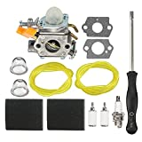 HIPA 985624001 Carburetor with Air Filter Adjustment Tool for Ryobi 30cc RY30000 RY30002 RY30004 RY30004A RY30004B RY30021A RY30041A RY30061A RY52001 RY52001A String Trimmer Brushcutter