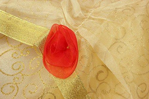 Loel Girls Belle Costume Princess Dress up