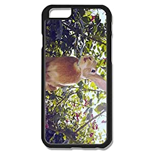 Hot Rabbit Hard Cover For IPhone 6