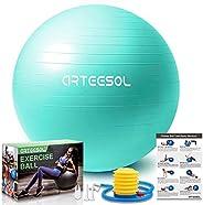 Yoga Ball arteesol Anti-Burst Exercise Ball, Fitness Balance Swiss Ball with Quick Pump 45/55/65/75/85cm Anti-
