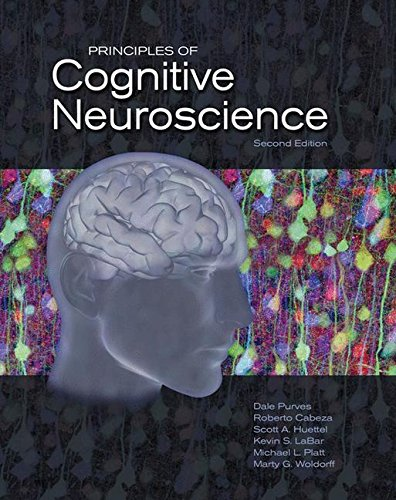 878935738 - Principles of Cognitive Neuroscience