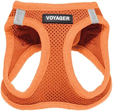 Voyager Step-in Air Dog Harness - All Weather Mesh Step in Vest Harness for Small and Medium Dogs by Best Pet Supplies Orange (Matching Trim) XS (Chest: 13-14.5) (207-ORW-XS)