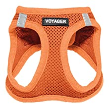 """Voyager Step-in Air Dog Harness - All Weather Mesh, Step in Vest Harness for Small and Medium Dogs by Best Pet Supplies, Orange (Matching Trim), XL (Chest: 21-23"""") (207-ORW-XL)"""