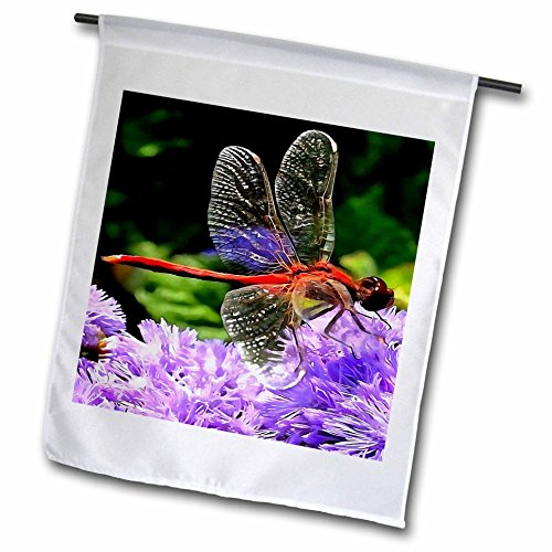 Taiche - Acrylic Painting - Dragonfly - Red Dragonfly on Violet Purple Flowers - 12 x 18 inch Garden Flag (fl_245531_1) (Gossamer Streamer)