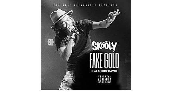 skooly fake gold mp3