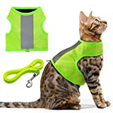Best Cat Harnesses - EXPAWLORER Reflective Cat Jacket Harness with Leash Set Review